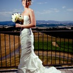Bride overlooking vineyard - SJ Harmon Photography