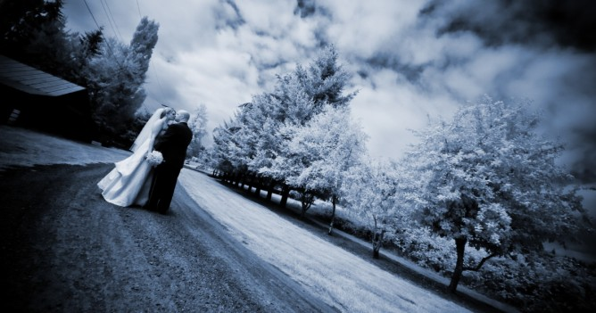 Infrared with blue tone - SJ Harmon Photography